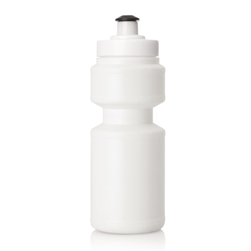 Plastic Drink Bottle W/Screw Top Lid - 325Ml